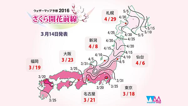 20160316sakurazensen01