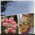PhotoGrid_1392541863929.jpg