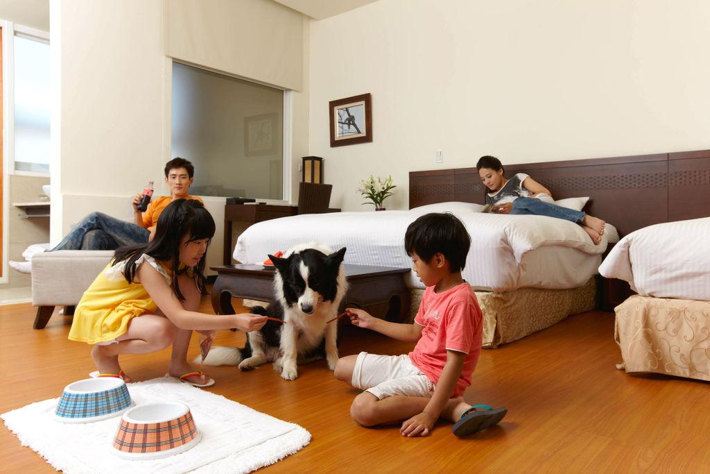 5.東森山林渡假酒店推出寵物套房,讓毛小孩 也能一起出遊