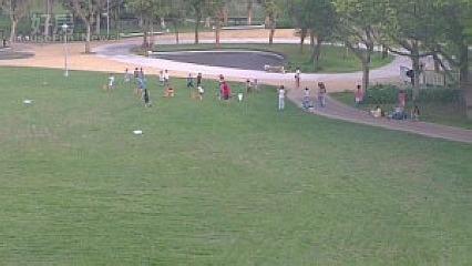 北市大湖公園 捷運站旁「陽光草坪」重新開放