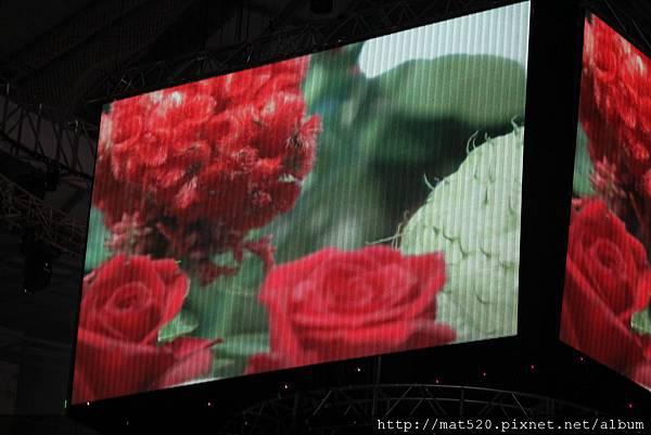 IMG_0606新娘秘書&自助婚紗—100年10月10日-怡婷+京威-百年好合