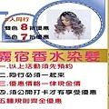 MAT520美特之約造型達人-永正店 -霧宿香水染髮9