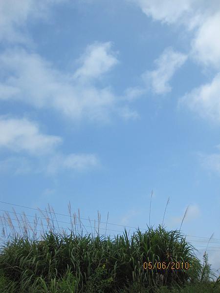 天氣好好:D