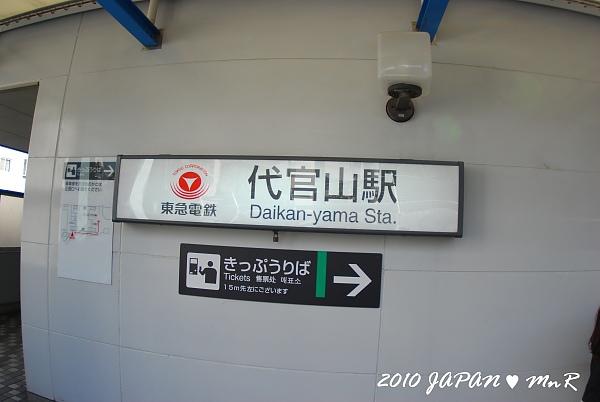 DSC_3386_600.JPG