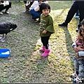 森林鳥花園_26.jpg