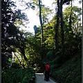森林鳥花園_30.jpg
