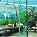09_Taipei Zoo.jpg