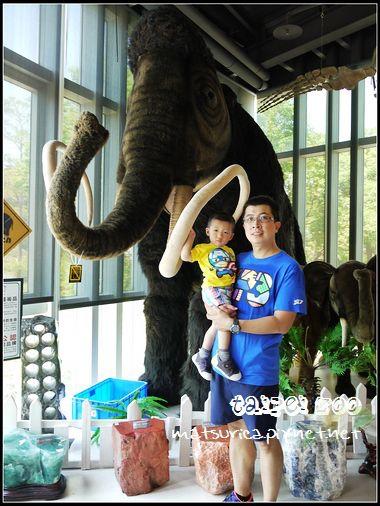14_Taipei Zoo.jpg