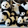 13_Taipei Zoo.jpg
