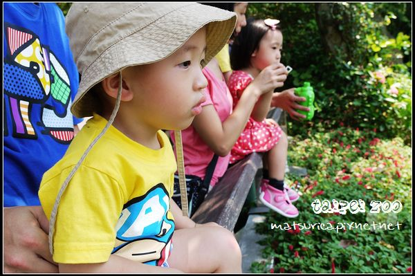 16_Taipei Zoo.jpg
