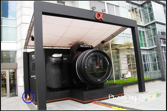 Sony a 33 a55-01.jpg