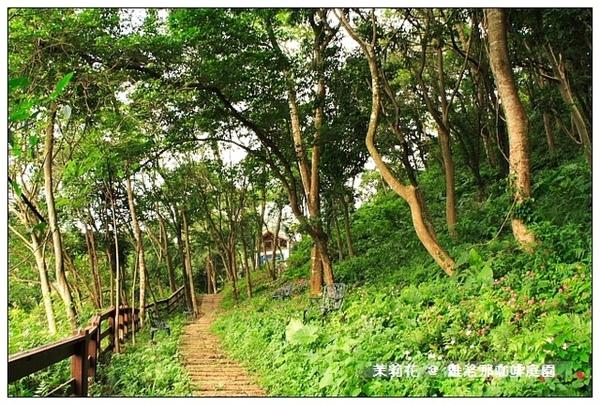 旁邊的超短森林步道