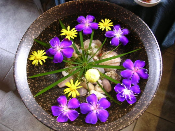 喜歡水盆內放花