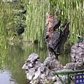 花港觀魚的魚型石頭