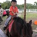 到小牛仔牧場騎馬嘍