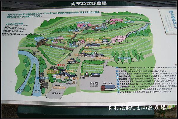 01_大王wasabi.jpg
