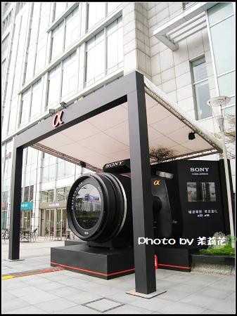 Sony a 33 a55-03.jpg
