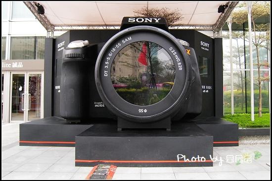 Sony a 33 a55-02.jpg