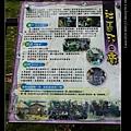 nEO_IMG_IMG_2267.jpg