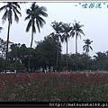 nEO_IMG_DSCF4422.jpg