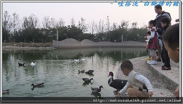nEO_IMG_DSCF2715.jpg