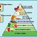 健康飲食金字塔(一)
