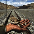 The road ahead(發展與生態的問題)