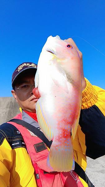 20151201魚6.jpg