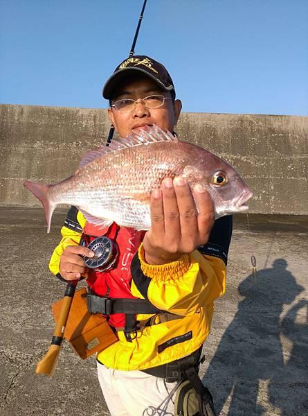 20151201魚8.jpg