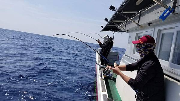 0409魚3