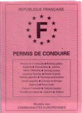 法國駕照範本