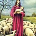 牧羊.jpg