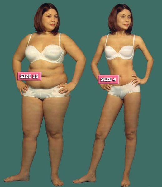 fat-vs-thin-709125.jpg