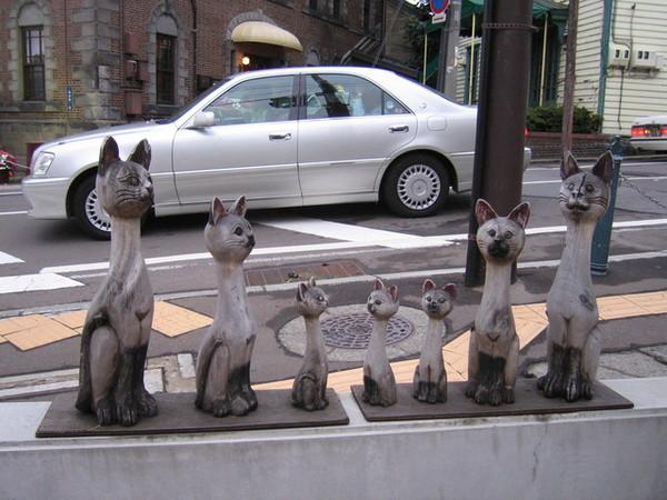小樽街道上的貓雕像