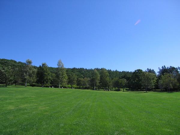 十勝花鐘的草原