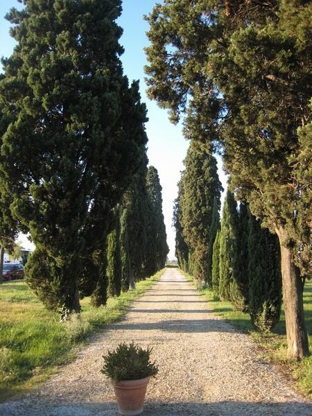 義大利Day4-031.jpg