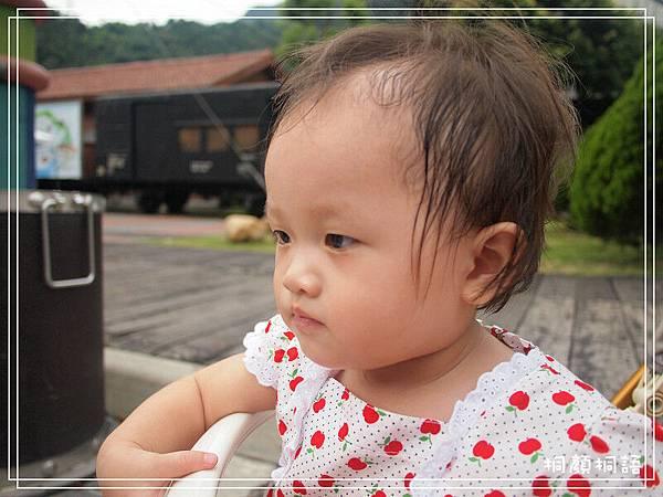20110806-13P12.jpg