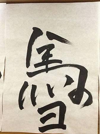 IMG_0860