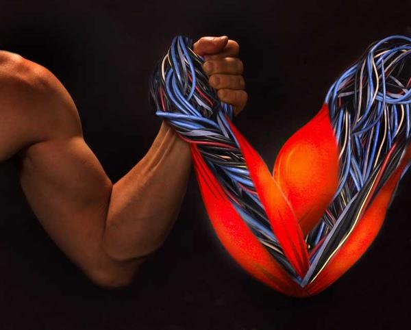 muscleflex.jpg