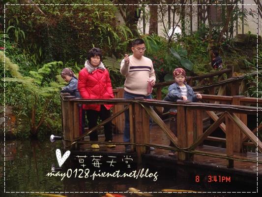 2010.01.08-13溪頭新明山.JPG