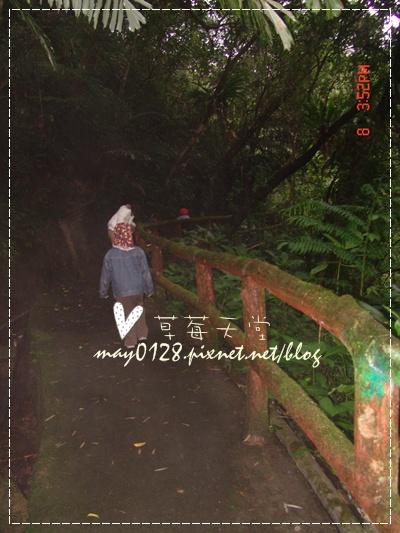 2010.01.08-29溪頭新明山.jpg