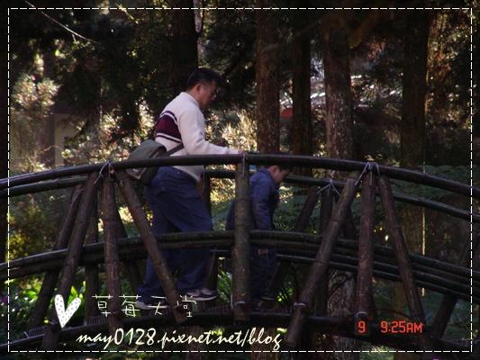 2010.01.09-11溪頭森林遊樂區.JPG
