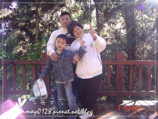 2010.01.09-21溪頭森林遊樂區.JPG