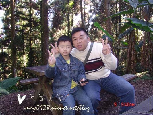 2010.01.09-25溪頭森林遊樂區.JPG