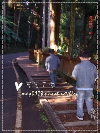 2010.01.09-27溪頭森林遊樂區.jpg