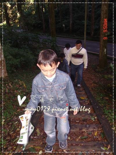2010.01.09-28溪頭森林遊樂區.jpg