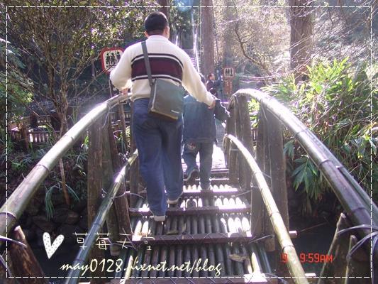 2010.01.09-40溪頭森林遊樂區.JPG