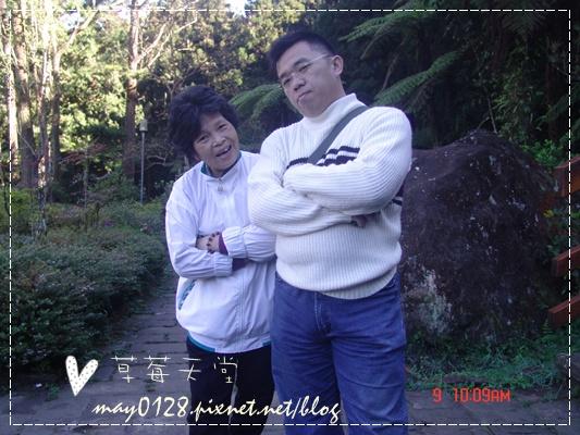 2010.01.09-58溪頭森林遊樂區.JPG