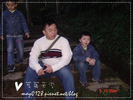 2010.01.09-71溪頭森林遊樂區.JPG