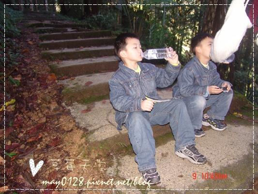 2010.01.09-76溪頭森林遊樂區.JPG